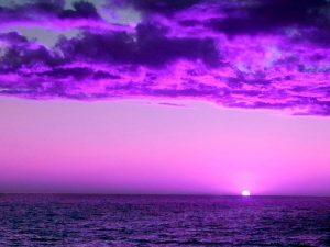 AAN DE ZWAARTEKRACHT ONTSNAPT: Tangerine Dream-Pilots Of Purple Twilight/The Virgin Recordings 1980-1983