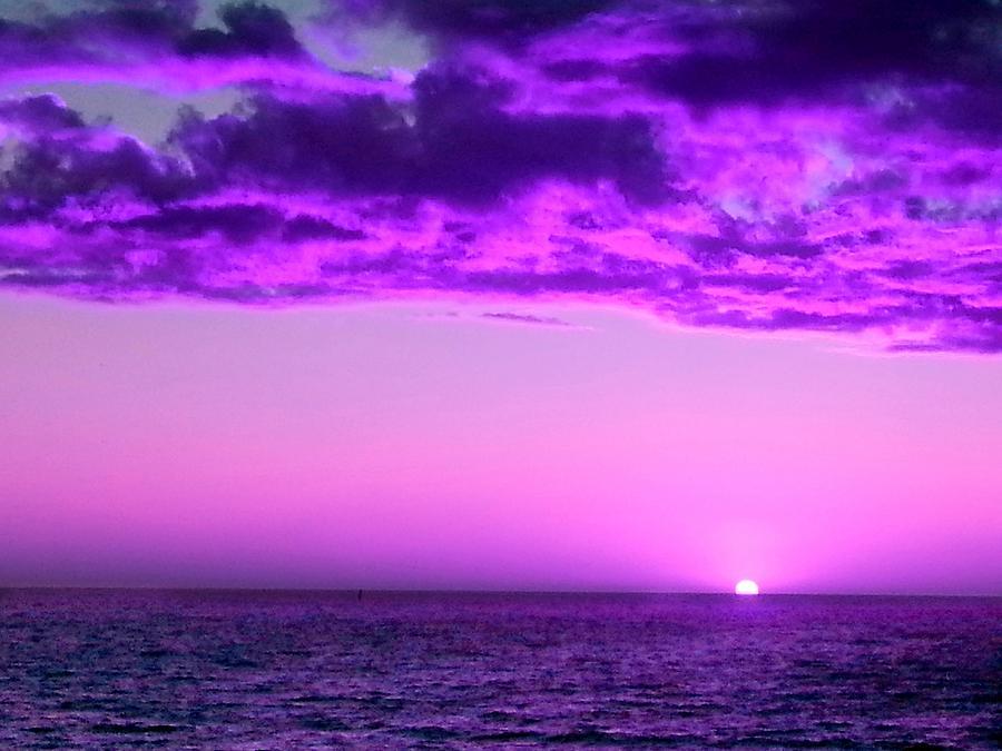 Lees meer over het artikel AAN DE ZWAARTEKRACHT ONTSNAPT: Tangerine Dream-Pilots Of Purple Twilight/The Virgin Recordings 1980-1983